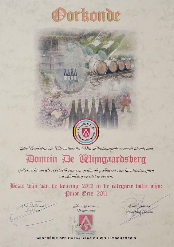 welkom domein de wijngaardsberg